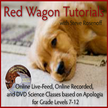 Red Wagon Tutorials
