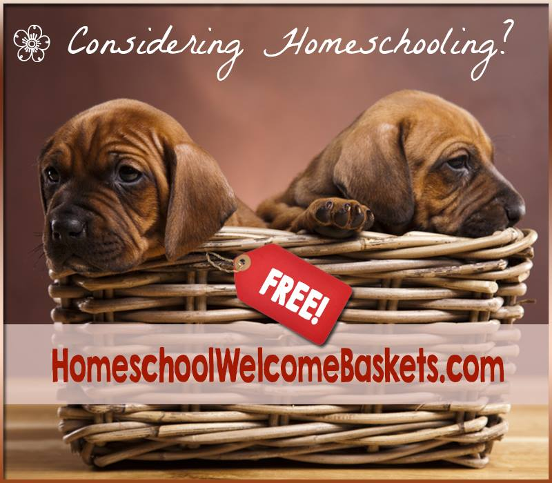 www.HomeschoolWelcomeBaskets.com