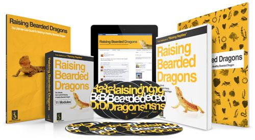 Raising Bearded Dragons