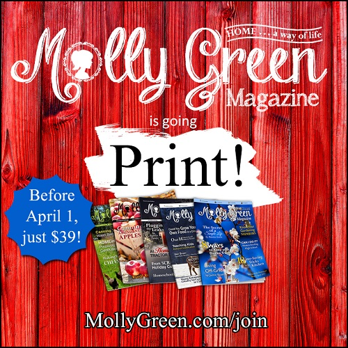 Molly Green Magazine is going Print!