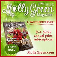 Molly Green Print Magazine SALE!