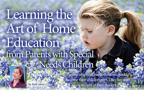 Learning the Art of Home Education from Parents with Special Needs Children
