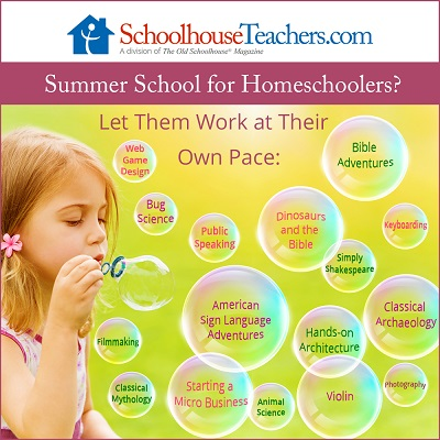 Summer School for Homeschoolers_