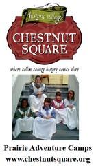 Chestnut Square