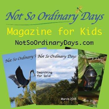 Not So Ordinary Days