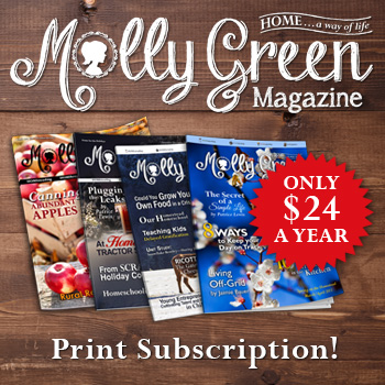 Molly Green Print Magazine