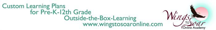 www.wingstosoaronline.com
