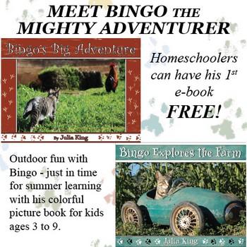 www.bingoadventures.com/p/homeschool-with-bingo.html